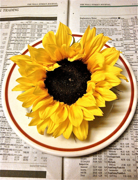 sunflower%20and%20wall%20street%20journal%20.jpg