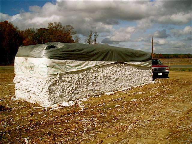 cotton%20bale.jpg